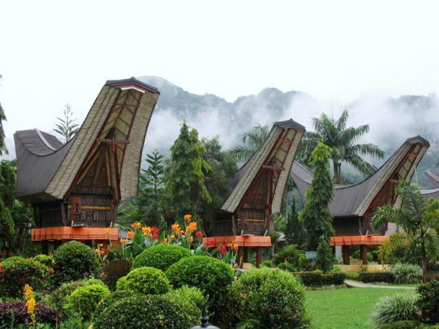 インドネシア・スマトラ島マンデリンの風景
