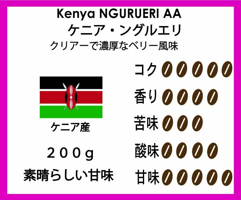 ケニア産珈琲豆ングルエリ
