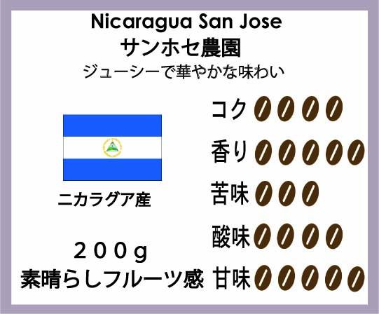 ニカラグア珈琲豆サンホセ農園