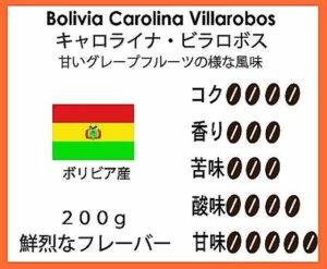 ボリビア珈琲豆・キャロライナ農園
